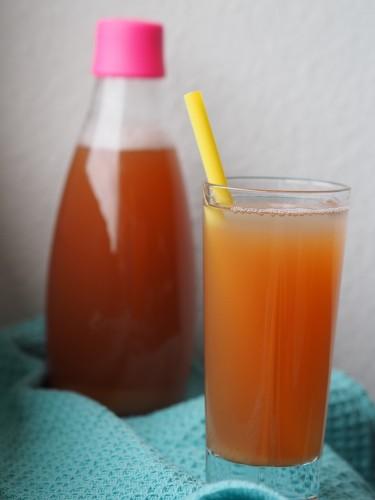Sukkerfri Rabarber Saft Drink Sommerdrik